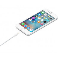 Apple Lightning to USB 2 m (MD819ZM)